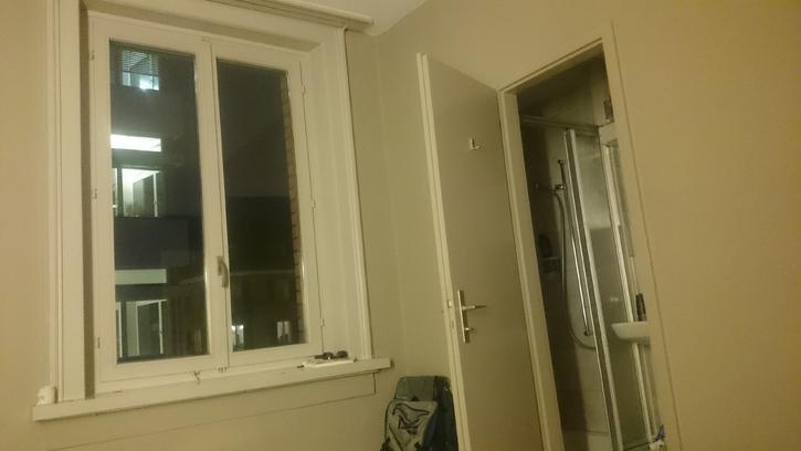 1 Zimmer in Zürich 4