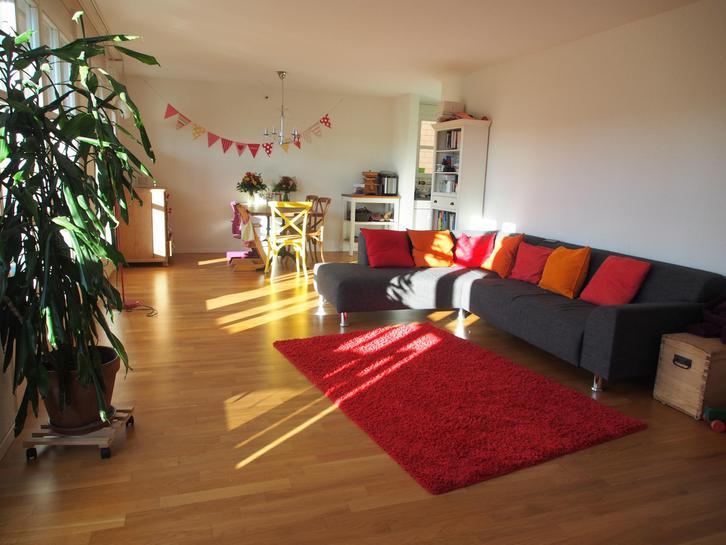 Grosse und sehr helle 4.5 Zimmerwohnung in Familienfreundlicher Siedlung zu vermieten 3400 Burgdorf
