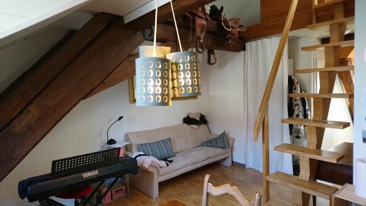 Heimelige 1.5 Maisonette Dachwohnung an zentraler Lage 4