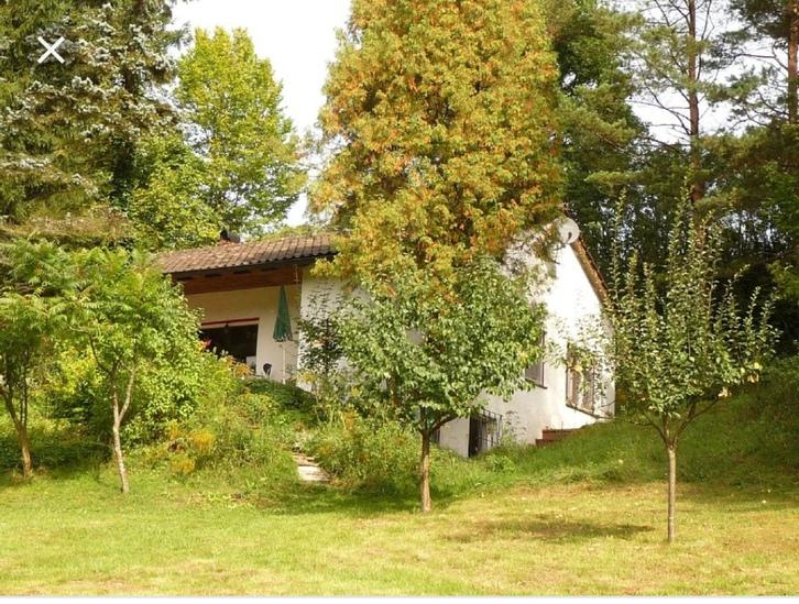 Haus im Grünen oder Bauland gesucht Wald Zh