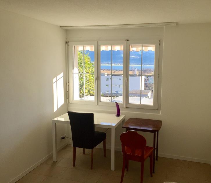 Neu renovierte 2 Zimmer Wohnung mit Seeblick in Jona SG 4