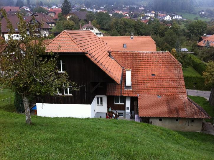 Wohnung in ehemaligem Bauerhaus in Jens 3