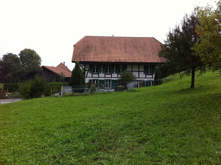 Wohnung in ehemaligem Bauerhaus in Jens 4