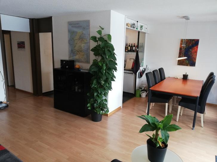 Ruhige, sonnige, kinderfreundliche 3,5 Wohnung + EHP zu verkaufen 3