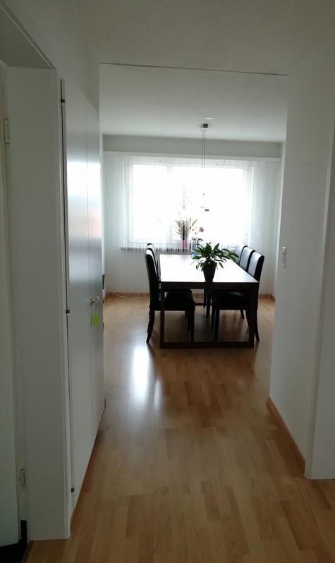 Schöne, lichte, geräumige 3.5-Zimmer-Wohnung in 8132 Hinteregg ZH 2
