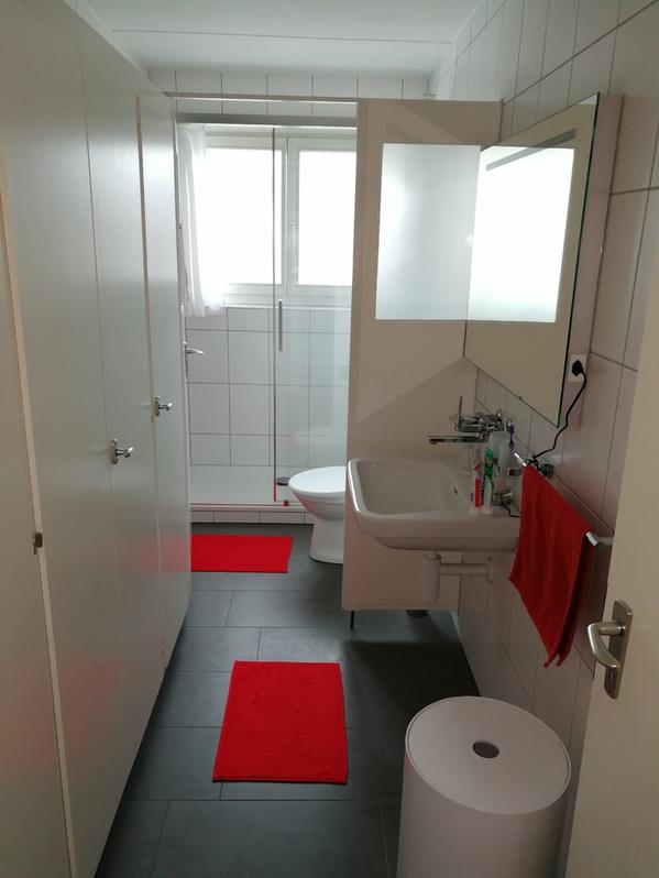 Schöne, lichte, geräumige 3.5-Zimmer-Wohnung in 8132 Hinteregg ZH 4