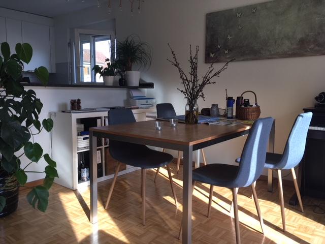 Möblierte 1 1/2 Zimmer Wohnung 8400 Winterthur