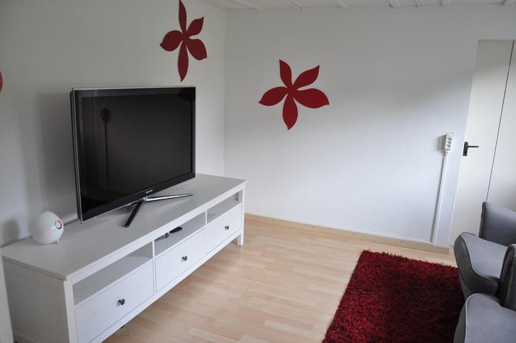 5-Zimmer-Einfamilienhaus in Dürrenäsch (AG) 3