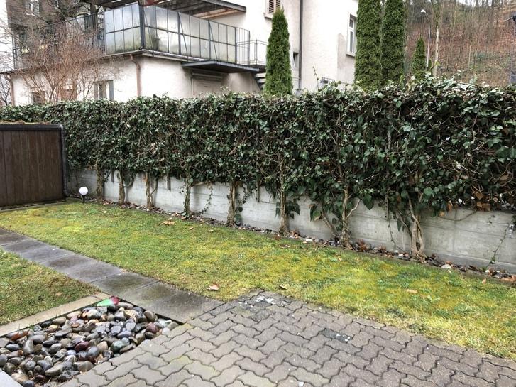 3.5 Zi- Gartensitzplatz-Whg 2
