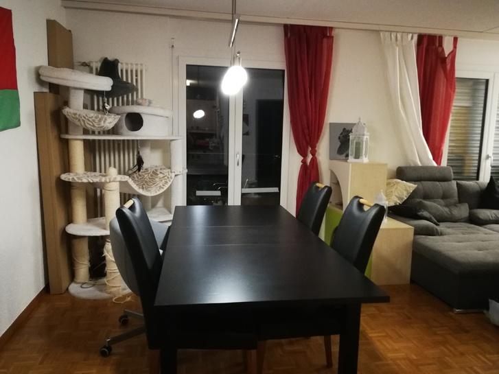 Gemütliche 3.5 Zimmerwohnung mit grossem Balkon 3