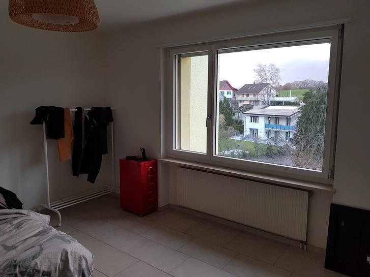 2,5 Zimmerwohnung mit Garagenplatz und Balkon 8126 Zumikon