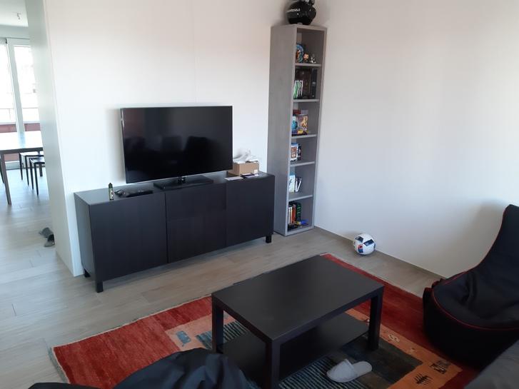 3.5 Zimmer Wohnung - WG Partner gesucht 2