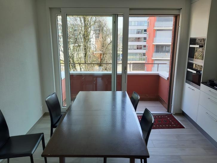 3.5 Zimmer Wohnung - WG Partner gesucht 3