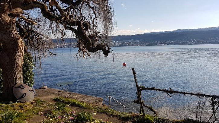 Zu vermieten per 01.06.2019: 3.5 Zi Wohnung 1 .OG mit Seeblick rundum, stilvoll und mit Gartensitzplatz am Zurichsee  3
