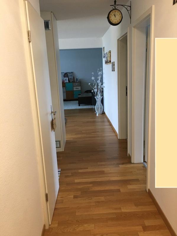 Grosse Wohnung - Katzensicher 3