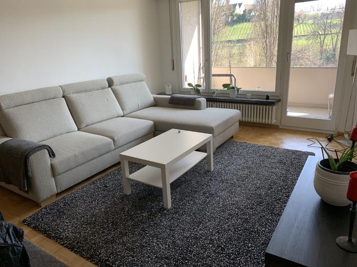Charmante 3 Zimmer Wohnung in Binningen BL 3