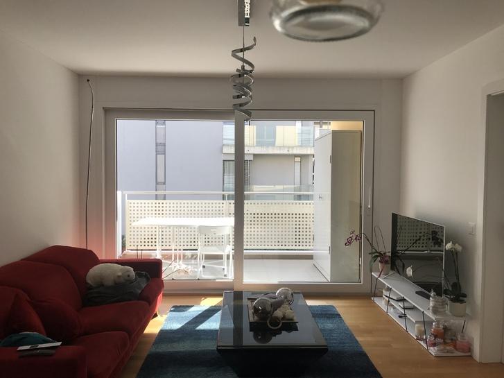 2,5 Wohnung in Tessin 2