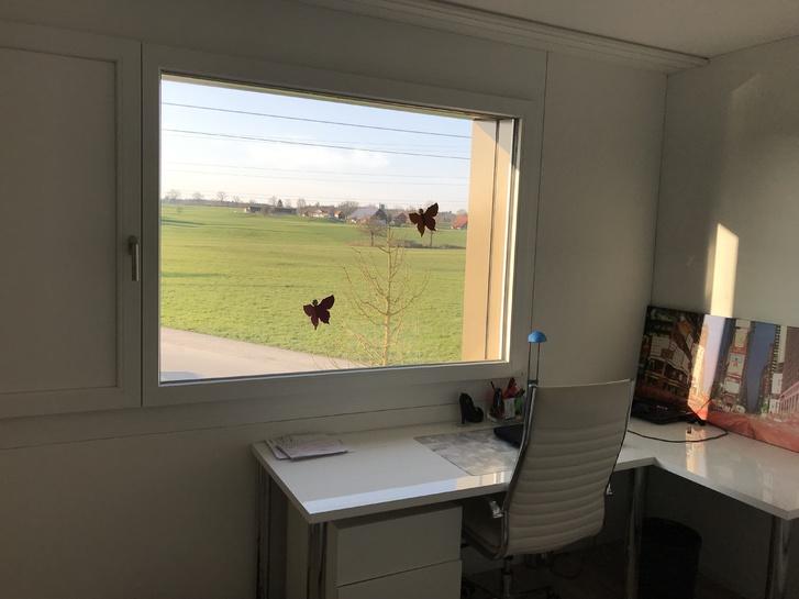 3.5 Zimmer Wohnung in Rothenburg 4