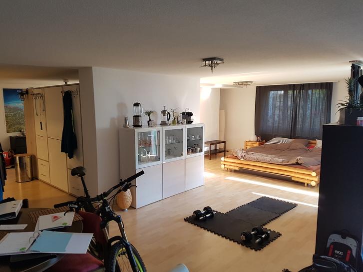 Loft-Gartenwohnung  2