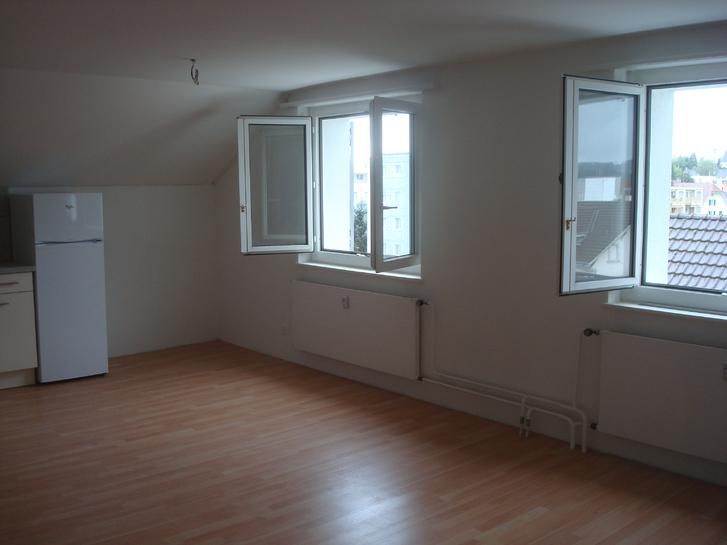 2.5-Zimmer-Dachwohnung in Hochdorf zu vermieten 3