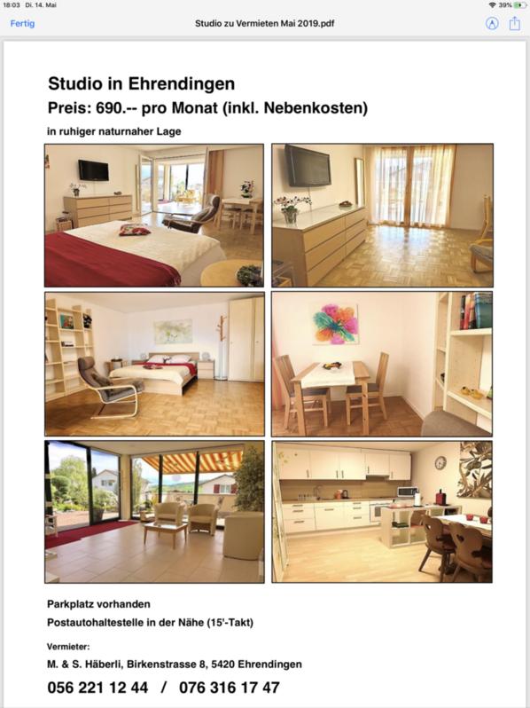Studio hell, modern möbiliert mit eigener grosser Küche u.Wintergartenvorraum zum Lesen und chillen. 2