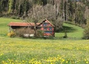 SUCHEN : Haus / Bauernhaus im Grünen auf Frühjahr 2020 3