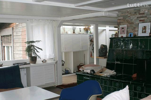 3.5 Zi. Wohnung-Haus mit Pool  4