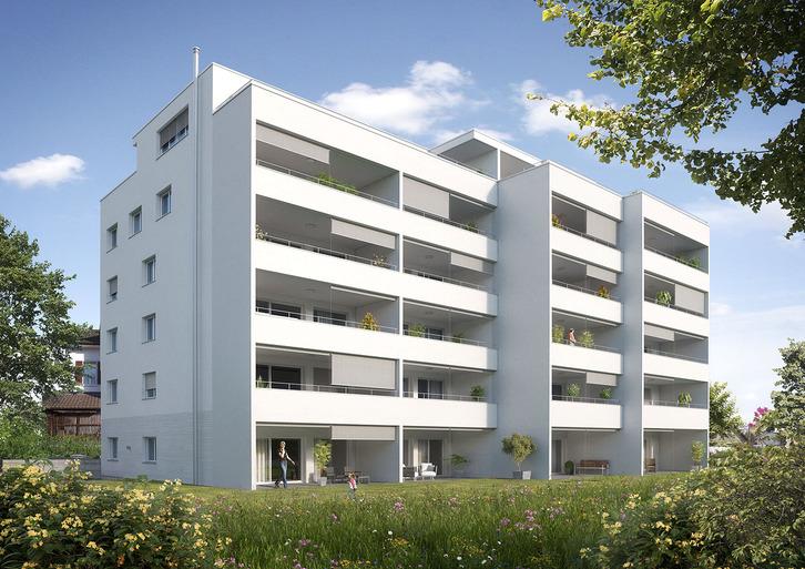 Grosse 2,5 Zimmer-Wohnung 5737 Menziken