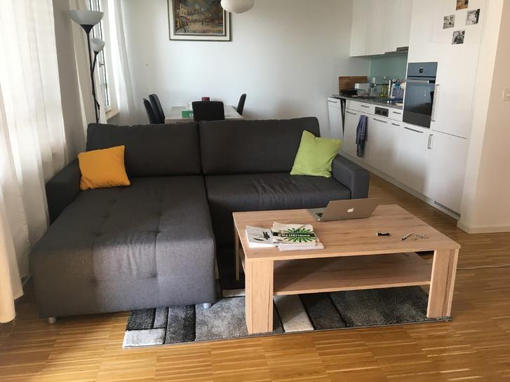 Befristet: eine helle, sehr moderne und möblierte Wohnung für einen Monat 8055