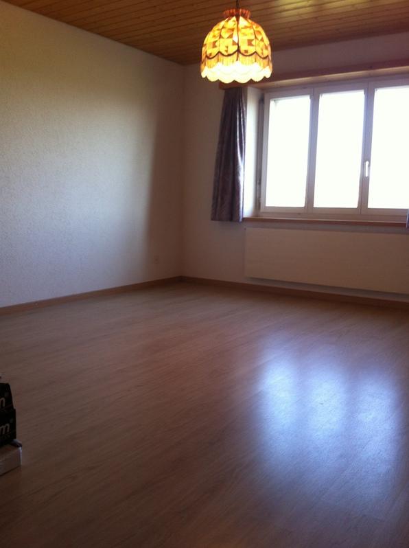 6,5 Zimmer Wohnung im Grünen / St. Galler Rheintal 4
