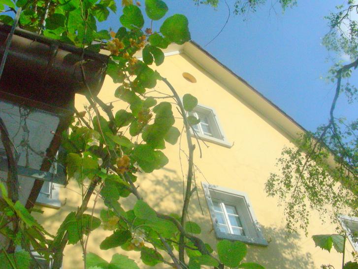 Charmantes Bauernhaus 8610 Uster
