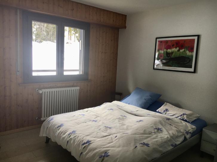 Ferienwohnung, komplett renoviert und möbiliert, direkt bei Skilift 4