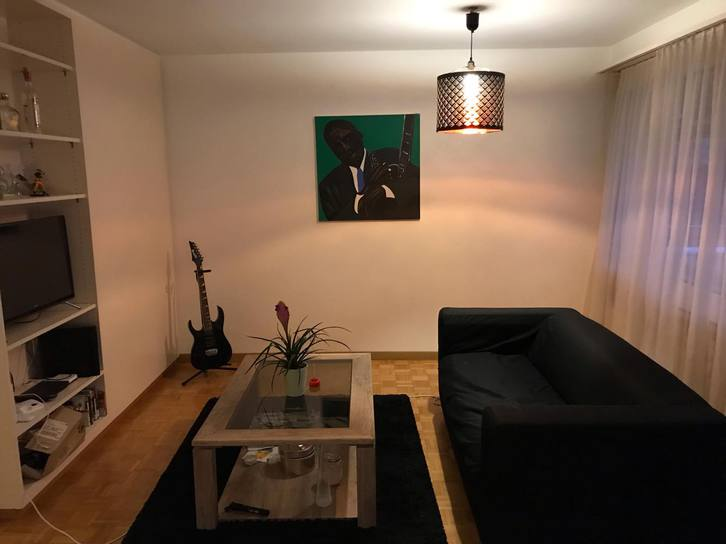 Schöne 2. Zimmer Studiowohnung mit Blick auf den Wald 5400 Baden