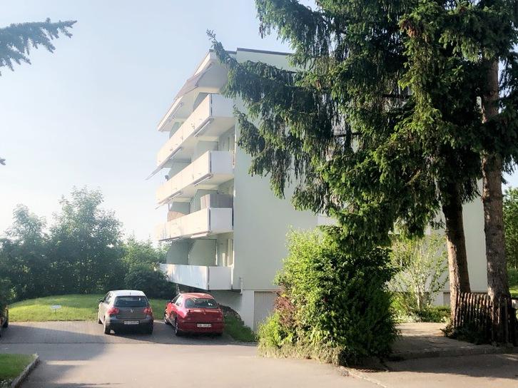 Helle, komplett renovierte 2-Zimmerwohnung in Flawil 8230 Flawil
