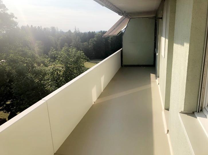 Helle, komplett renovierte 2-Zimmerwohnung in Flawil 2