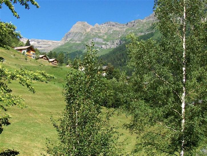 Chalet Zumofen in sonniger und ruhiger Lage, mit fantastischer, unverbaubarer Aussicht 4