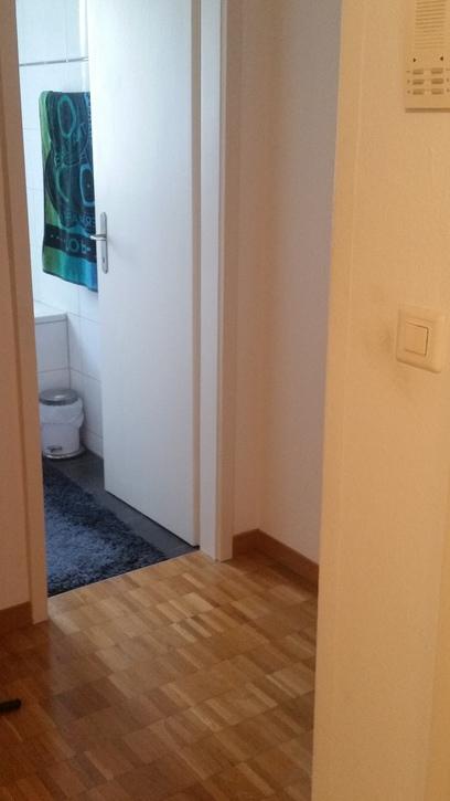 Möbilierte Schöne Geräumige 3,5 Zimmer Wohnung in Effretikon 8307 Effretikon