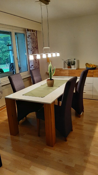 Möblierte 3 ½-Zimmer-Wohnung mit Gartensitzplatz und Autoeinstellplatz, befristet von April bis Juli 2020 3