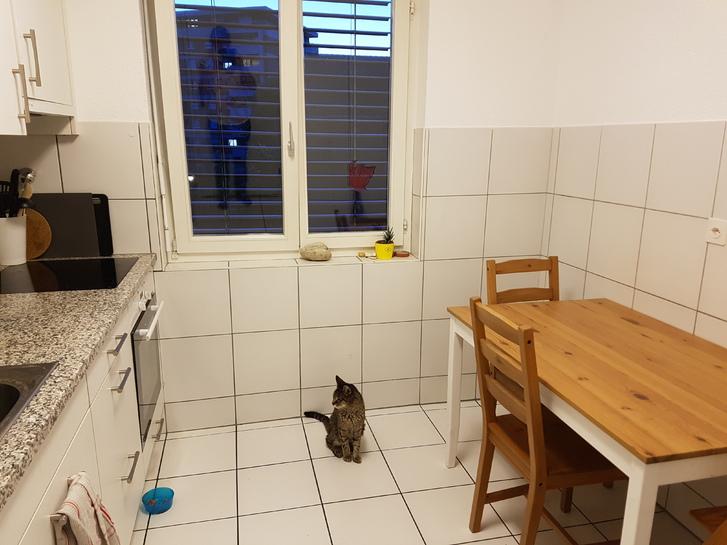 Grosse, helle 4.5-Zi-Wohnung in Zuchwil 2