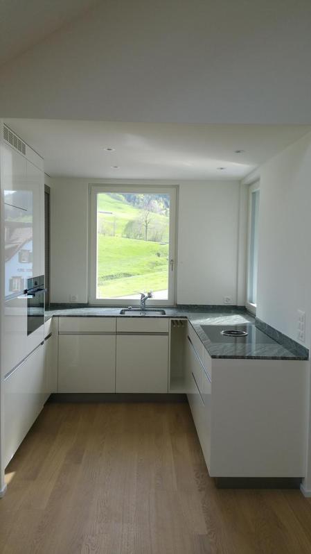 Super Dachwohnung mit Aussicht ins Grüne  2