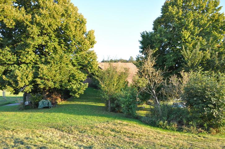 WG Zimmer in freistehendem Bauernhaus mit Garten 4