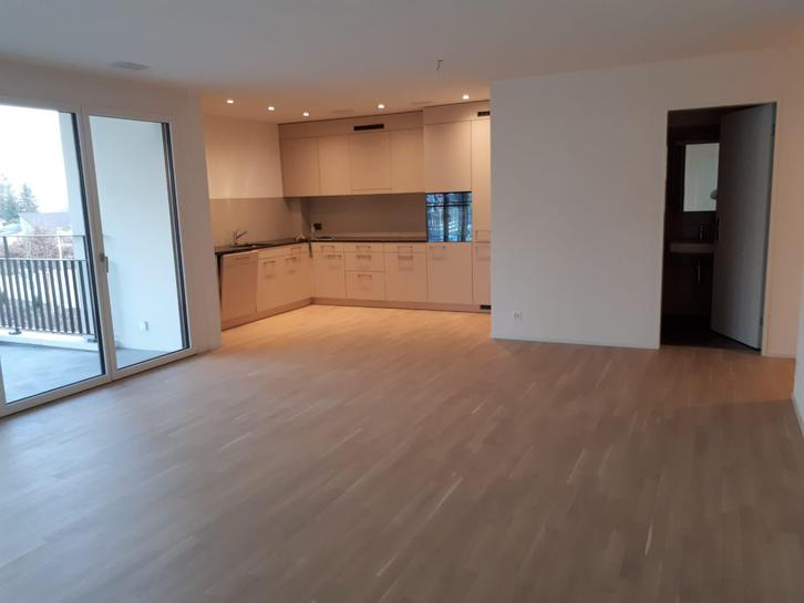 Nachmieter für moderne 3.5 Zimmerwohnung gesucht 5706 Boniswil