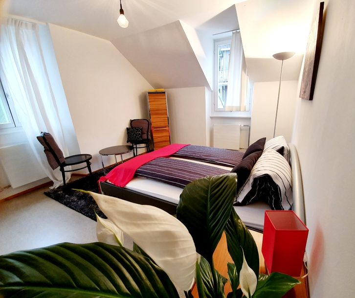 3.5 Zi Wohnung Luzern 4
