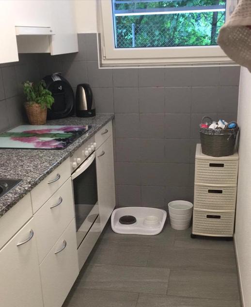 3 Zimmer Wohnung ideal für Katzenhalter geeignet. 3