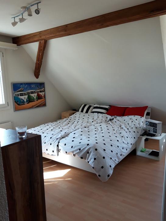 3.5-Zimmer Dachwohnung mit Garten zur mitbenützung 4