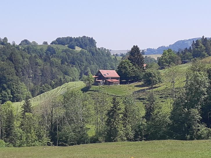 6,5 Zi- Haus in idyllischer Alleinlage 9614 Libingen