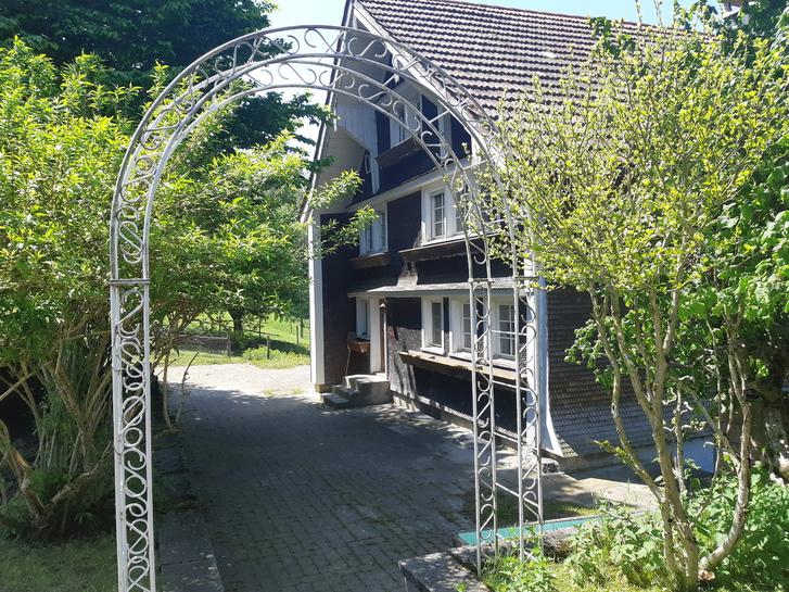 6,5 Zi- Haus in idyllischer Alleinlage 3
