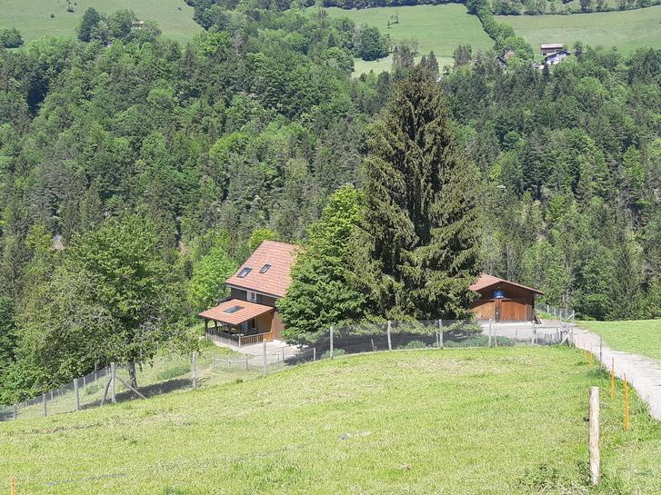 6,5 Zi- Haus in idyllischer Alleinlage 4