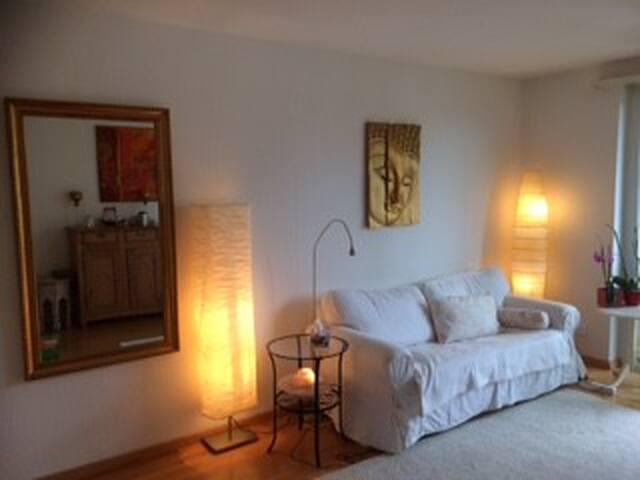 3,5 Zimmer Wohnung 8049 Zürich