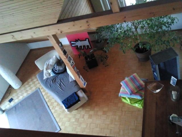 Gemütlich / Charmante Maisonette Wohnung vor den Toren Zürichs 4
